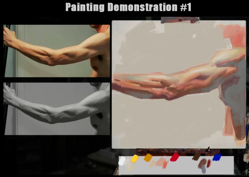 skin color palette demo1-header